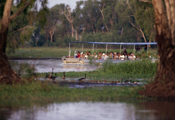 Australia - NT Kakadu -Yellow waters