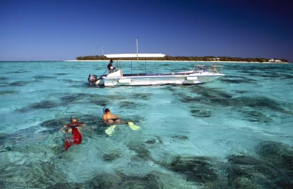 Australia - QLD Heron Island snorkeling