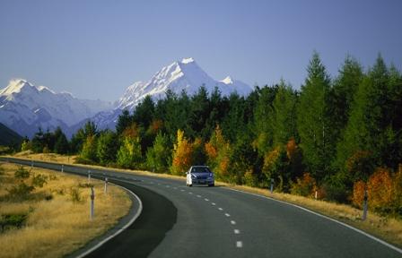 NZ_Driving