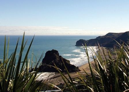 NZ_bush&beach.jpg